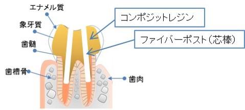 コア 歯周病専門医